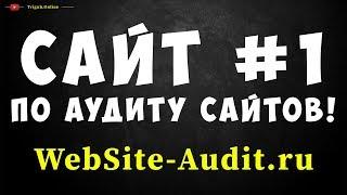 Аудит сайта! Сайт номер 1 по аудиту сайтов * WebSite-Audit.ru