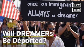 Is DACA About to End? | NowThis