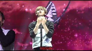 150530 The EXO'luXion 나비소녀 백현 baekhyun Don't Go -2