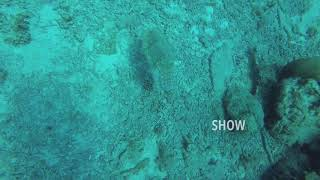 preview picture of video 'Anambas Diving 2018.4.7'