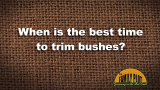 Q&A - When is the best time to trim bushes?