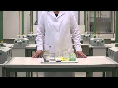 Helminthosporium oryzae párnapárna