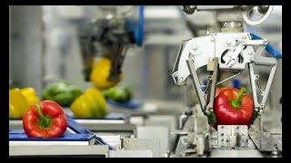 Video: Balení podporované robotem: o 30 procent více produktivity