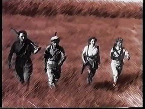 """תיעוד היסטורי מרגש: צפו בסיפור ההקמה של צה""""ל"""
