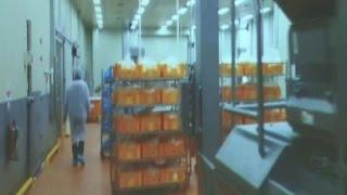 초·중·고교 등 7,297개소에 불량식품 납품