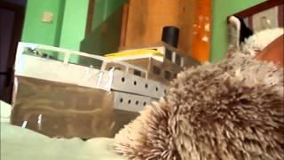 Video vs Dj sivr- imerx hardtekk song