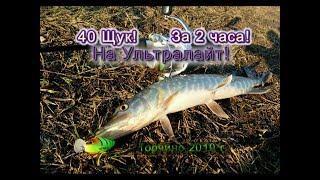 Платная рыбалка в торчино владимирская областье