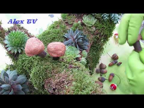 Gartendeko aus Naturmaterialien und mit Hauswurz / Sukkulenten selber basteln .