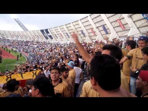 """Carnaval REBEL 💙💛🎷🎺"" Barra: La Rebel • Club: Pumas"