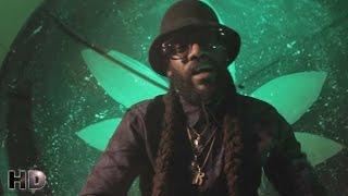 Tarrus Riley - Herbs (Sensimena) [Official Music Video HD]