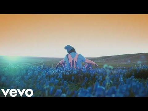 Billie Eilish - ilomilo (Video)