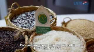 Thai Hom Mali Rice Buyer's Guide