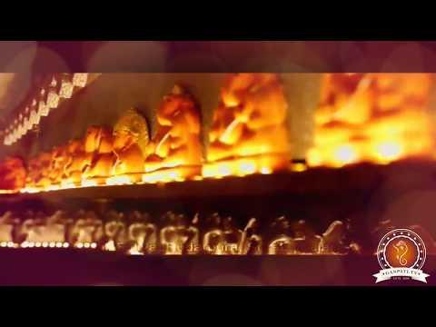 Hardik Sorathiya Home Ganpati Decoration Video