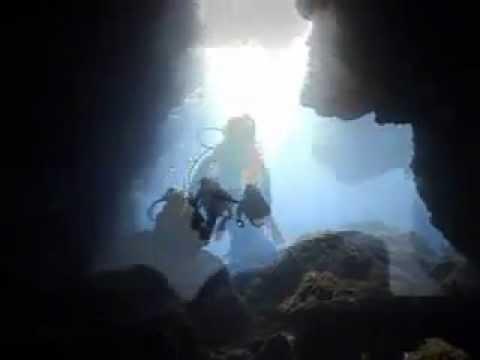 ZOEA diving