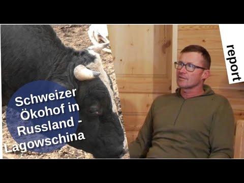 Schweizer Ökohof in Russland: Lagowschina [Video]