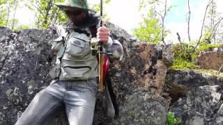 Рыбалка река умба мурманская область