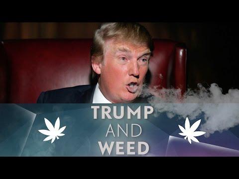 The future of legal marijuana under Trump