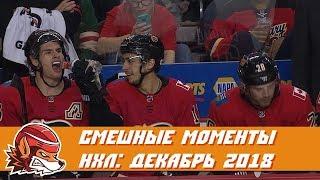 Самые курьёзные и смешные моменты НХЛ: декабрь 2018