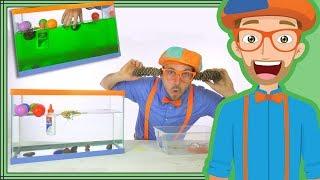 1 Hour Blippi Compilation  | Educational Videos for Children - Sink or Float
