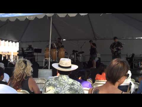 My Band Covering Master Blaster by Stevie Wonder at Sacramento Pacific Rim Festival 2014