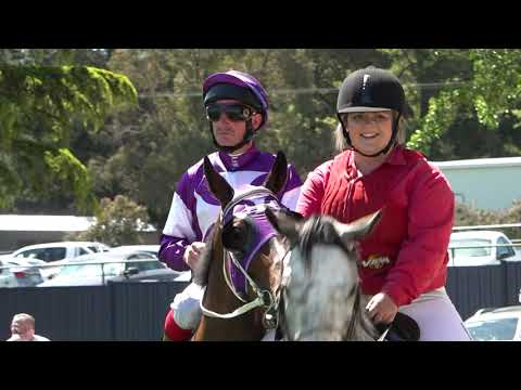 Careers In Racing - Clerk Of The Course