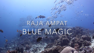 Blue Magic - Raja Ampat - Indonesia