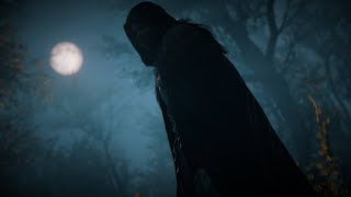 Assassin's Creed Valhalla Stealth Viking Combat and Treasure 4