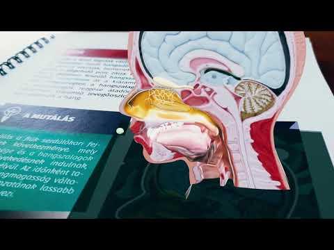 Mit kezdjen a pinwormokkal. Pinworms a tüdőben és az orrban - A testen