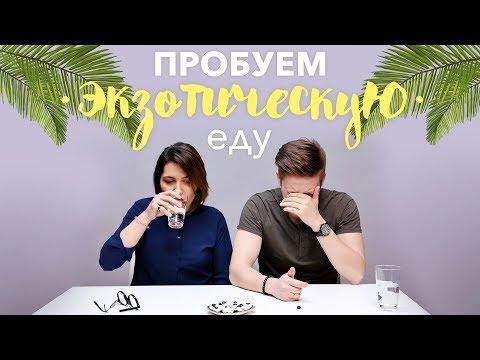 , title : 'Пробуем экзотическую еду [Рецепты Bon Appetit]'