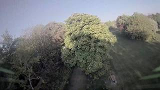 PeshiFPV 4 Packs Of Drone Freestyle Insanity | Tree Tunnels Will I make It Through The Wicker House