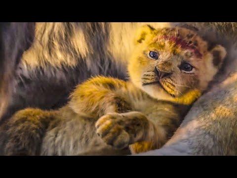 Король Лев (2019) — Телевизионный ролик