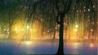 Sleepsong ~ Lullaby from a Secret Garden