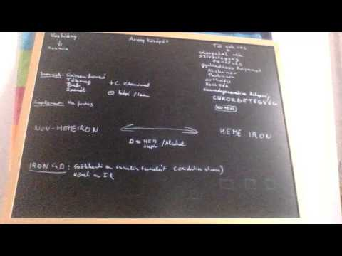 Diabetikus polineuropátia electroneuromyography