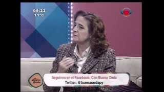 preview picture of video 'Rosa Elcarte nos cuenta sobre la movilización Cero Muertes Evitables 20-06-2014'