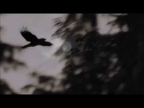 SOLITUDE RAVENCROW - RIVER OF SOULS