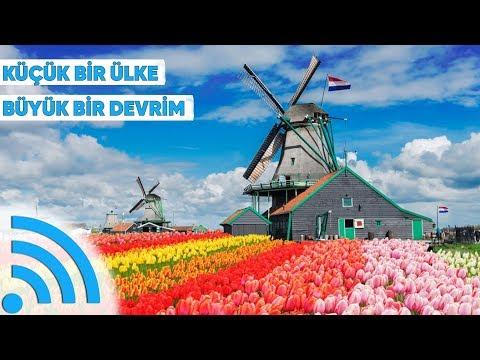 Hollanda Tarım Alanında Nasıl Zirveye Çıktı