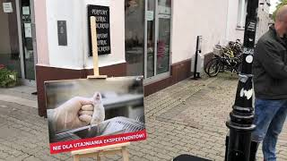 Wideo1: Aktywiści z Fundacji Viva! na leszczyńskim deptaku