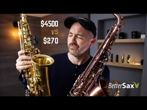 Download Cheapest Sax on Amazon VS My Professional Alto Saxophone Mp4 HD Video and MP3
