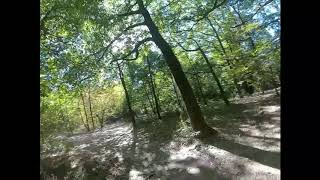 FPV 011 DJI HD Woods