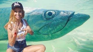 BITTEN BY A GIANT FISH!  - HUGE TARPON