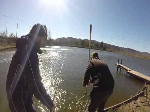La canzone andiamo a pesca per scaricare