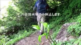 青田難波山新潟県上越市花の名山