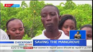 Conservationist and communities in Mombasa raise alarm over clearing of the Mangrove forest