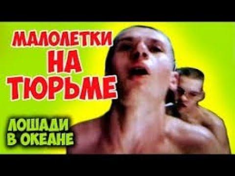 """Драма о зоне """"Лошади в океане"""" --- Drama about the area of """"Horses in the ocean"""""""