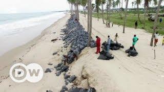Fighting erosion in Nigeria | Eco-at-Africa