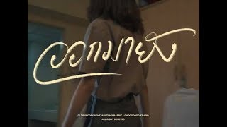 ANATOMY RABBIT - ออกมายัง? | Are you out yet? [ OFFICIAL MV ]