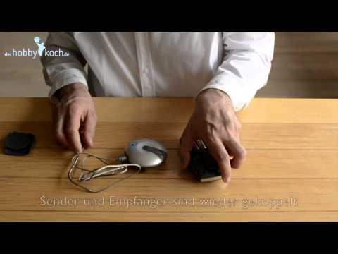 Knospen Osteochondrose und Birke