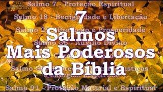 Os 7 Salmos Mais Poderosos Da Bíblia   7, 18, 23, 35, 51, 58 E 91