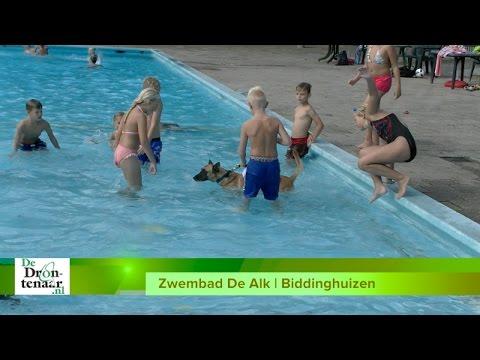 Afsluiting zwemseizoen: Zwemmen met de hond in De Alk en De Abelen