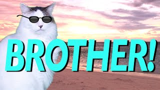 HAPPY BIRTHDAY BROTHER! - EPIC CAT Happy Birthday Song
